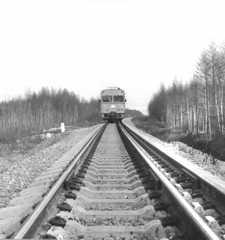 Двое жителей Киселевска воровали железнодорожные шпалы