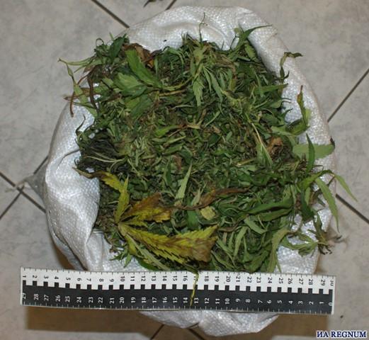 У жителя Крапивинского района полицейские изъяли запасы конопли